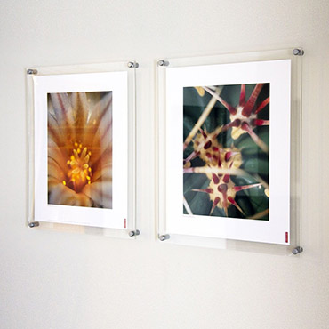 standard size photo frames