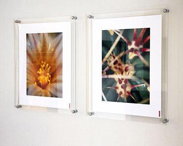 standard size photo frames